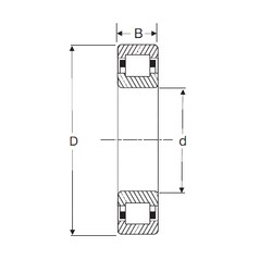 120 mm x 260 mm x 55 mm  SIGMA NUP 324 cylindrical roller bearings