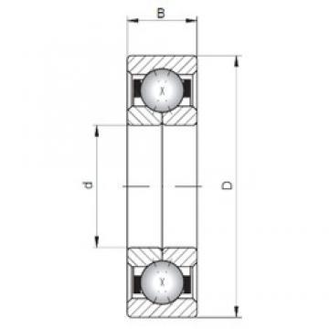 Loyal QJ303 angular contact ball bearings
