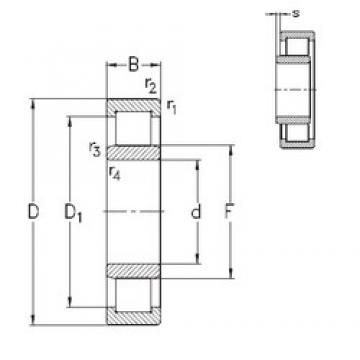 20 mm x 47 mm x 18 mm  NKE NU2204-E-TVP3 cylindrical roller bearings