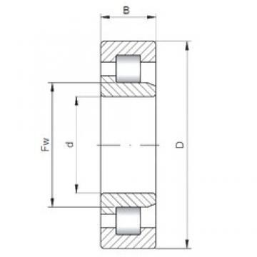 240 mm x 500 mm x 155 mm  Loyal NJ2348 E cylindrical roller bearings