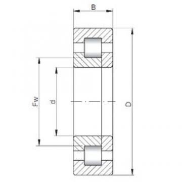 50 mm x 130 mm x 31 mm  ISO NUP410 cylindrical roller bearings