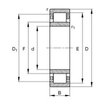 17 mm x 47 mm x 14 mm  FAG NU303-E-TVP2 cylindrical roller bearings