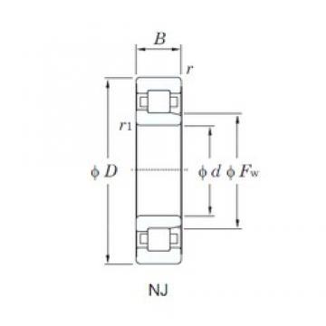 260 mm x 480 mm x 130 mm  KOYO NJ2252 cylindrical roller bearings
