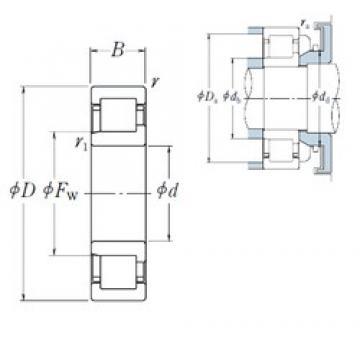 20 mm x 47 mm x 18 mm  NSK NJ2204 cylindrical roller bearings