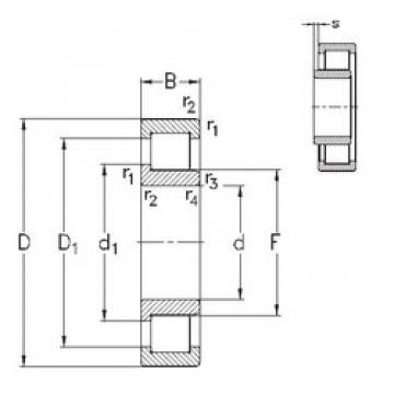 20 mm x 47 mm x 18 mm  NKE NJ2204-E-TVP3 cylindrical roller bearings