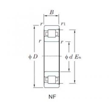 50 mm x 130 mm x 31 mm  KOYO NF410 cylindrical roller bearings