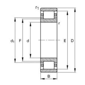 120 mm x 260 mm x 55 mm  FAG N324-E-M1 cylindrical roller bearings