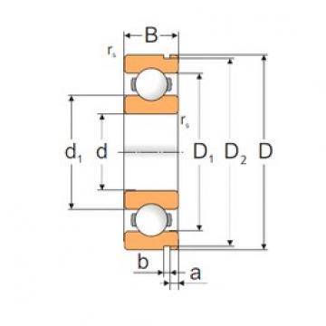 50 mm x 130 mm x 31 mm  Loyal 6410N deep groove ball bearings