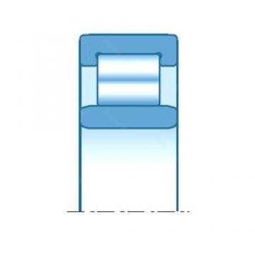20,000 mm x 47,000 mm x 18,000 mm  SNR NU2204EG15 cylindrical roller bearings