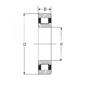 120 mm x 260 mm x 55 mm  SIGMA N 324 cylindrical roller bearings