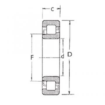 20 mm x 47 mm x 18 mm  FBJ NJ2204 cylindrical roller bearings